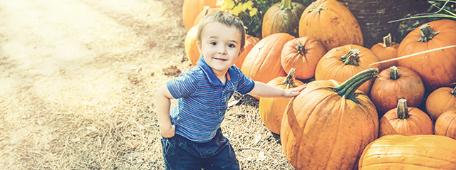 Activities for a Fun Family Fall | From pumpkin carving to hayrides, try these fun family activities while embracing the weather and colors of fall. | A little boy poses in front of a patch of pumpkins.